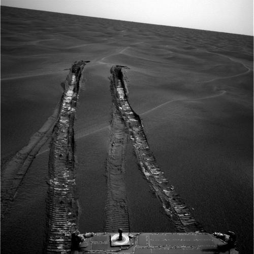 Opportunity_61805